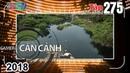 CAMERA CẬN CẢNH | Tập 275 FULL | Vấn nạn rác thải - Thoát chết - Hai tên trộm thay ca - Đi tắt 🌳