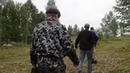 ЧП Ачинск | Вот так варварским способом заготавливают веники в Ачинском районе