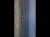 феодосия, баунти, море теплее чем в августе!!!
