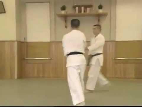 Shomen Uchi Ikkajo Osae 2