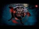 A.Robi - Balukgulak İçdaaçary Diss Darkroom,West Life Hemmekişa Diss Hip-Hop Panda