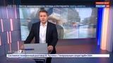 Новости на Россия 24 Во время урагана в Ростове-на-Дону упавшей веткой убило человека
