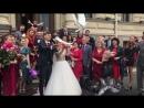 Белоснежные голуби на свадьбу в Спб Петергоф Пушкин 8911983-93-81🕊🕊❤️