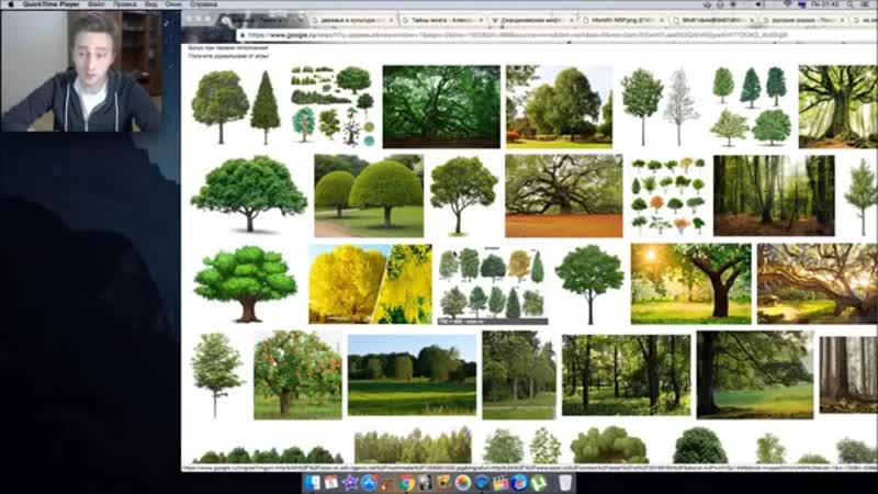 Деревья - это разумные существа другого уровня