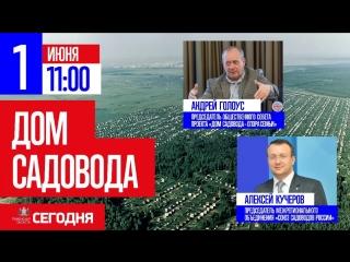 В эфире: Андрей Голоус и Алексей Кучеров
