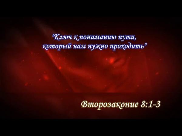 «ПИНХАС» 5771 ч.2 «Как остановить поражение в народе Бога и внутри себя, или откуда берутся бесы и как от них избавиться» А.Огиенко (16.07.2011)