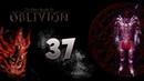 TES IV Oblivion 37 - ЗВЕЗДА АЗУРЫ