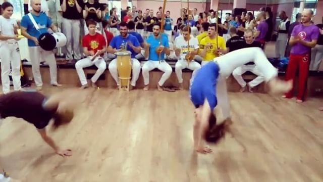 Invertebrada_rc video