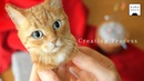 Процесс изготовления кошки из шерстяного войлока