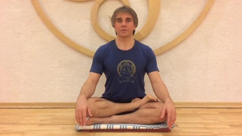 Аштанга йога для начинающих с Игорем Красильчуком