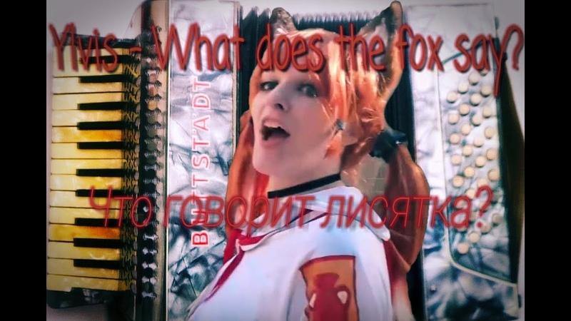 Что говорит лисятка? What does the fox say? (Accordion Cover) Совёнок фест 2018