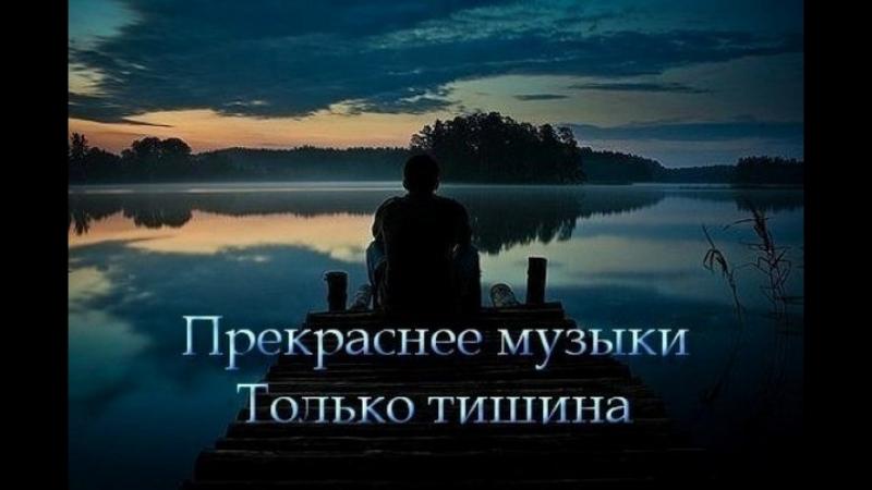 Тишины хочу....