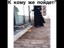 Dag_bosBlDy4OUn1BA.mp4