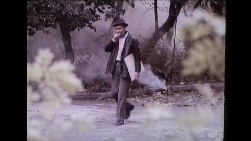 Abşeron rəngləri (film, 1983)