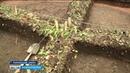 Раскопки Бустанаевского могильника в Башкортостане