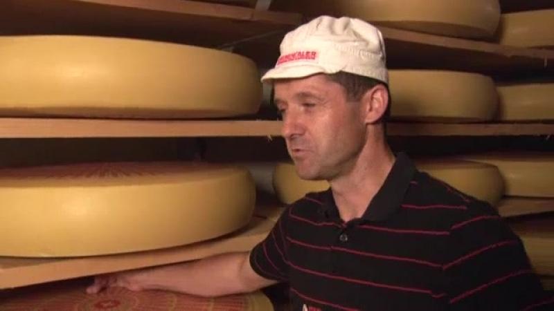 Käse mit Tradition der Emmentaler