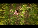 Woman body and beautiful nature by drone-