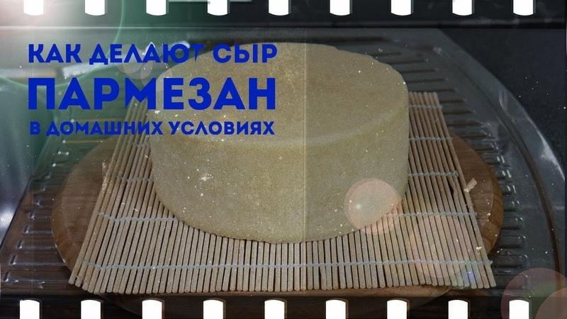 как приготовить сыр типа пармезан дома