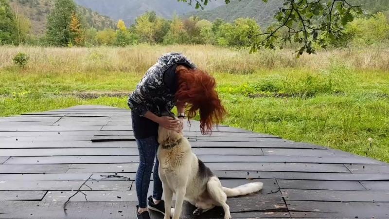 👉Катя рассказала  о том, как провела эти 5 дней у нас в экопоселении для веганов и сыроедов в горах центральной Сербии с мужем и