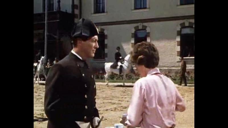 La Fuga de los Caballos Blancos Robert Taylor Curd Jurgens Dir Arthur Hiller 1963