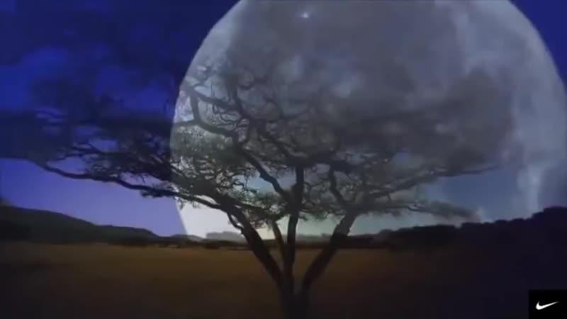 СЕРДЦЕ ЗАМИРАЕТ)) Потрясающая, самая Красивая Музыка для души КР ( 480 X 854 ).mp4