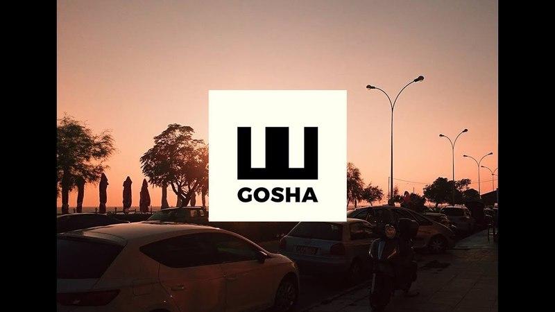Gosha Shermadini - Fury