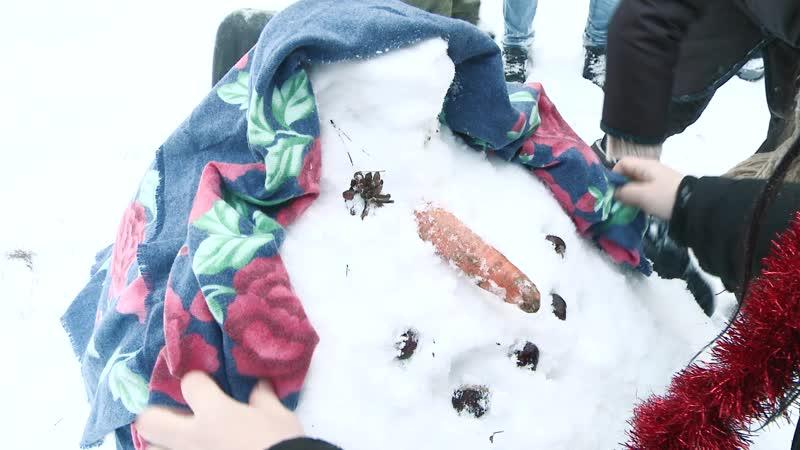 Снегоходы январь 2019