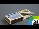 В Грузии легализовали марихуану - МИР 24
