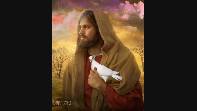 В проявленной Славе Божьей происходит все чего мы не ожидаем Стефани Херцог