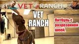 Vet Ranch на русском - Питбуль с разрезанной шеей Pit Bull with Nasty Throat Wound