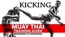 Muay Thai Training Guide Beginners to Advanced Kicking