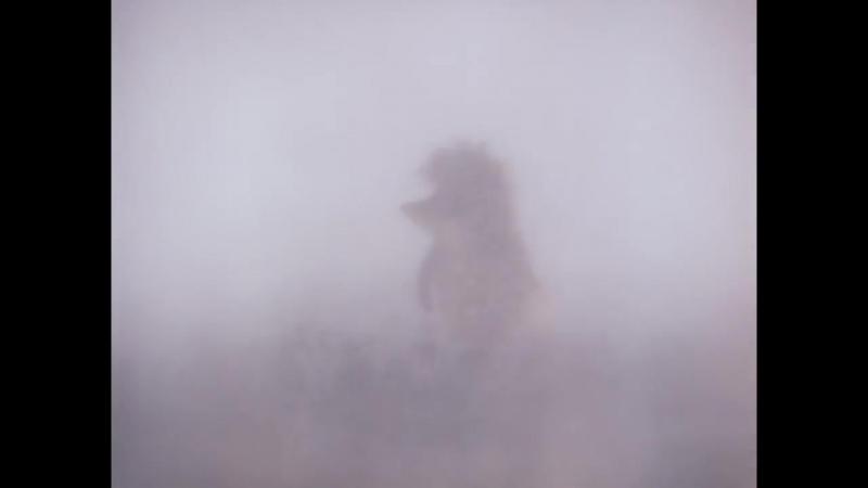 «Союзмультфильм» - Ёжик в тумане (1975)
