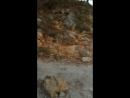 Абхазская медведица
