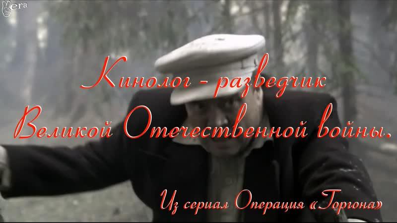 Кинолог - разведчик Великой Отечественной войны. Из сериал Операция «Горгона»