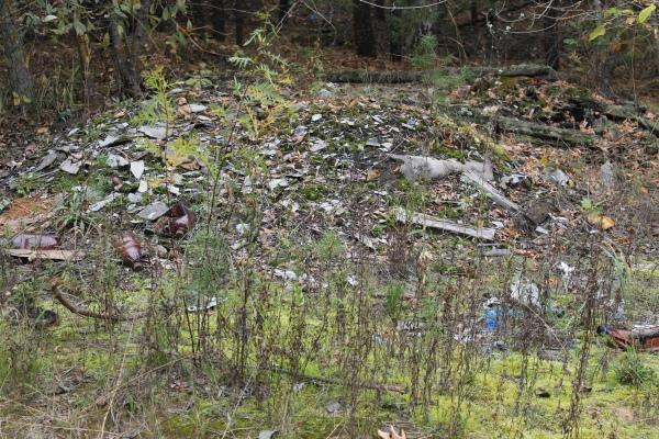 В Марий Эл на свалку мусора выкинули труп.