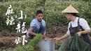 捉了10斤小龙虾,炒了一大锅硬菜:麻辣小龙虾【滇西小哥】