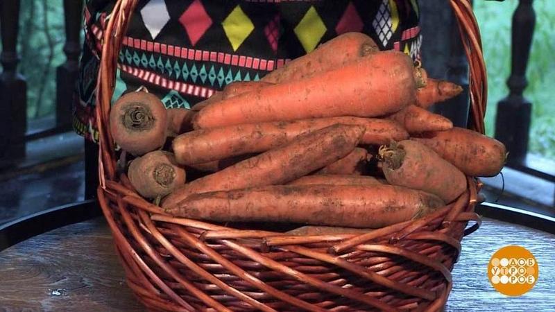 Морковь нахранении. Доброе утро. Фрагмент выпуска от12.10.2018