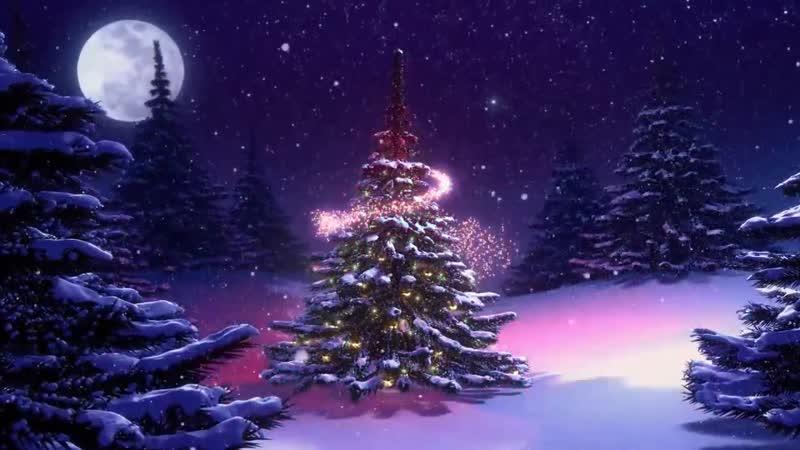 Футаж Новогодняя елка в лесу