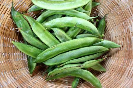 Гуаровая камедь - это клетчатка из семян гуарового растения.