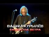 Вадим Курылёв - Молекула ветра