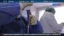 Новости на Россия 24 • Никакого самолечения! Свиной грипп охотится на слабых и бестолковых