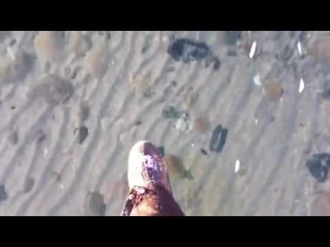 Удивительно прозрачный лед на водоеме