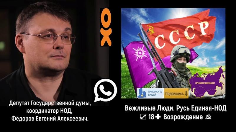 Фёдоров Е.А. о Поклонской и ПЕНСИОННОЙ РЕФОРМЕ.