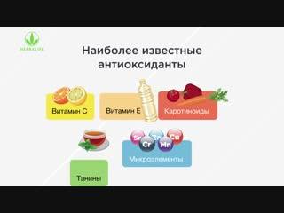 Антиоксиданты - природные источники продления молодости клеток