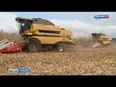 Погода вносит свои коррективы и в работу фермеров