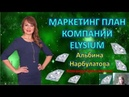 Супер маркетинг Элизиум. 5 направлений. Альбина Нарбулатова