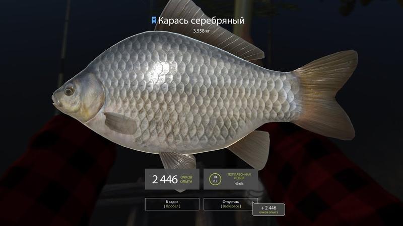 Русская рыбалка 4 оз. Комариное, трофейный карась