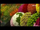 RHS Chelsea Flower Show 2018 Episode 4 [BBC] 21 May 2018