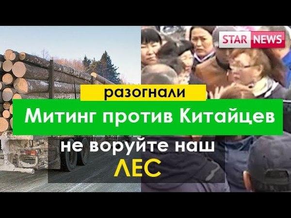 Разогнали Митинг провокаторов против вырубка леса Китайцами май Россия 2018