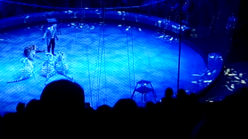 9.02.2019. Цирк на Фонтанке. Шоу- представление ЭпиЦЕНТР мира.